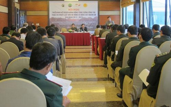 Deployment plan '' Actions to strengthen the enforcement of forest...
